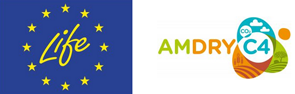 LIFE AMDRYC4 Logo